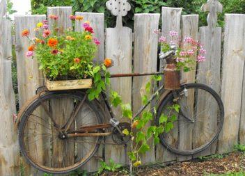 Ідеї для саду: клумба із старого велосипеда