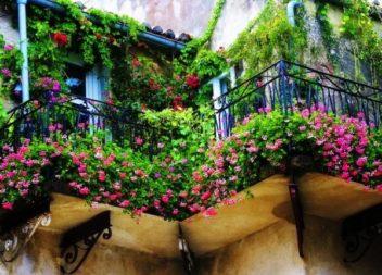 Сад на балконі та лоджії. 25 ідей
