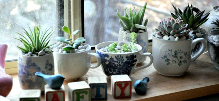 Оригінальні квіткові горщики із чашок. 20 ідей