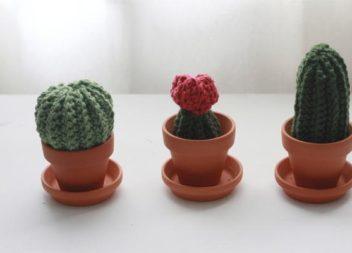Декор з кактусами: 24 ідеї для милого інтер'єру