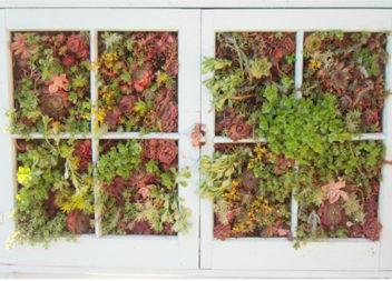 16 способів використати старі вікна