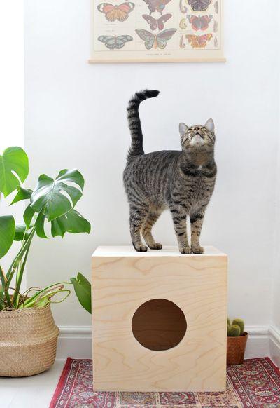 Дом для кота из фанеры своими руками 64