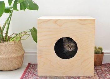 Простий будиночок для вашого котика своїми руками: майстер-клас