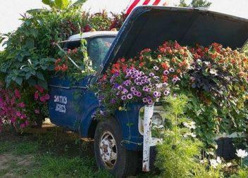 11 ідей ефектних квітників з машини