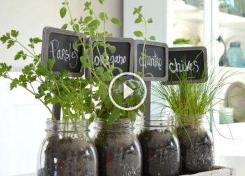Ярлики для саду своїми руками: відео-урок