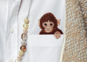 Вшиваємо мавпочку гладдю