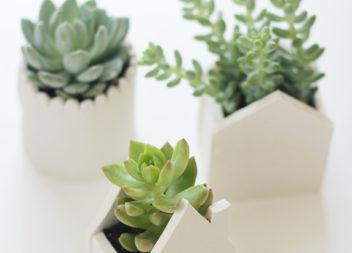 """""""Домівка"""" для маленької рослинки з полімерної глини"""