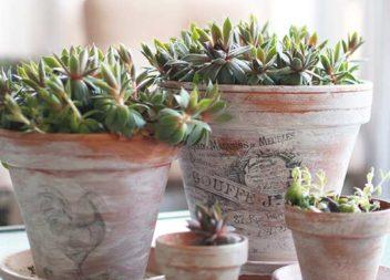 Ідеї декору квіткових горщиків