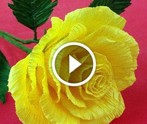 Троянда з паперу. Відео-урок
