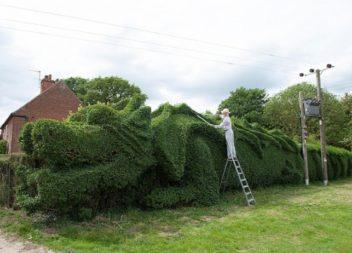 Чоловік 15 років працював над тим, щоб створити у себе на подвір'ї гігантського дракона