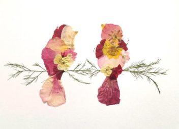 Аплікації-гербарії з літніх квітів (35 ідей для шкільних проектів)