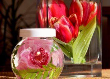 Як зберегти квіти за допомогою гліцерину