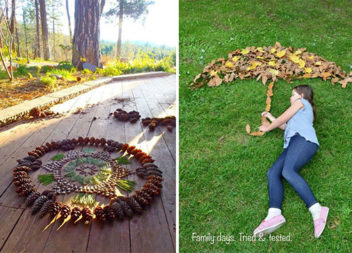 Творчість на прогулянці: композиції з опалого листя (34 ідеї)