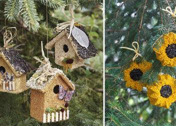 Зернові годівнички для птахів: 35 корисних ідей