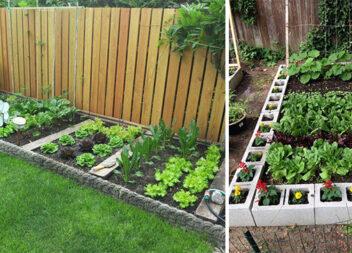 Створюємо красиву клумбу із квітами чи городиною самотужки (25 ідей)