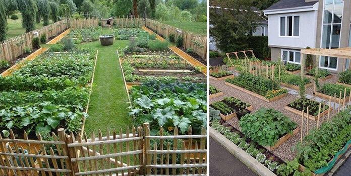 Формуємо зручні клумби для городини на присадибній ділянці (26 ідей)