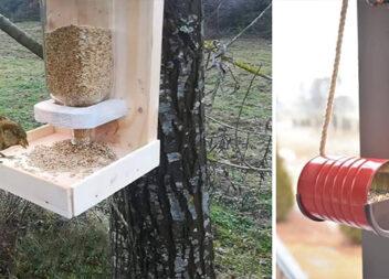 Виготовляємо годівничку для птахів із підручних матеріалів (15 ідей)
