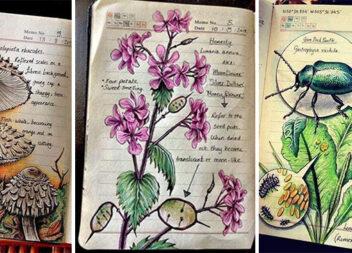 Неймовірний зошит із біології...