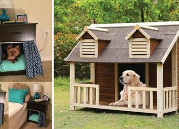 Оригінальні лежаки та хатинки для собак