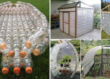 Друге життя пластикових пляшок. Ідеї для використання порожньої тари з-під напоїв