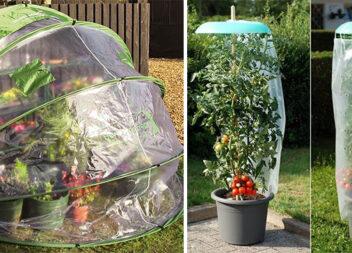 Садово-городні лайфхаки для тих, хто вирощує овочі
