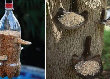 Допомагаємо пташкам перезимувати: 60 варіантів годівничок