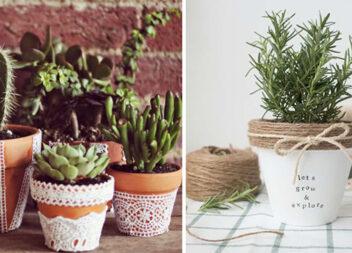 Як змінити некрасивий горщик для вазона в домашніх умовах (20 фото)