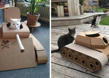 Ідеї розваг із котом. Робимо танки ;)