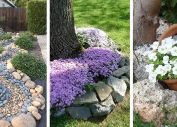 45 ідеальних клумб біля будинку з гравієм і дрібним камінням