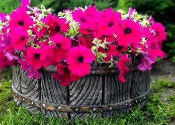 """Розкішний декор в сад! Секрет створення цементного кашпо """"Бочечка"""""""