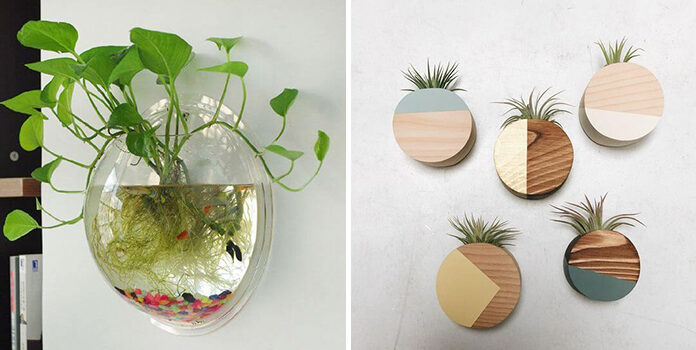 Красиві варіанти вертикального озеленення для невеликих кімнат